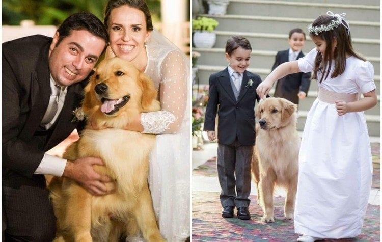 cachorro-aliança-casamento-750x475