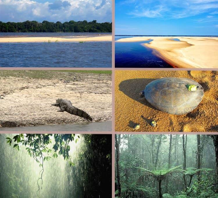 I-amazonia-lua-de-mel-estaçao-seca