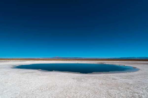 Laguna-Cejar