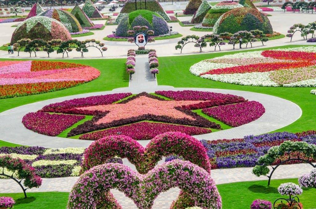 dubai-miracle-garden-3