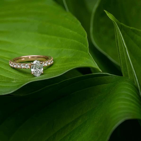 anel-noivado-ouro-rose-caseme-11