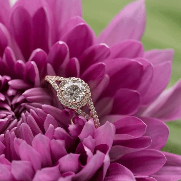 anel-noivado-ouro-rose-caseme-16