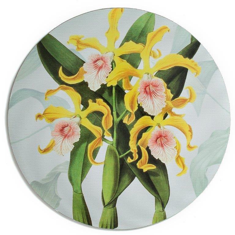 Suplat-em-vinil-floral-AMA-HOME