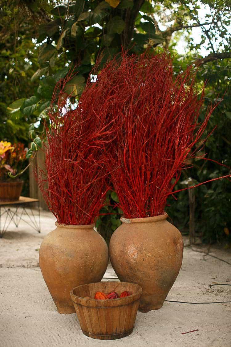 Bruncoso-Casamento-na-Bahia-Casamento-na-praia-Casamento-temático-Conchas-Decor-Decoração-vermelha-Fotografia-Fercesar-Mar-CaseMe1267-x-1900Amore-Produção_