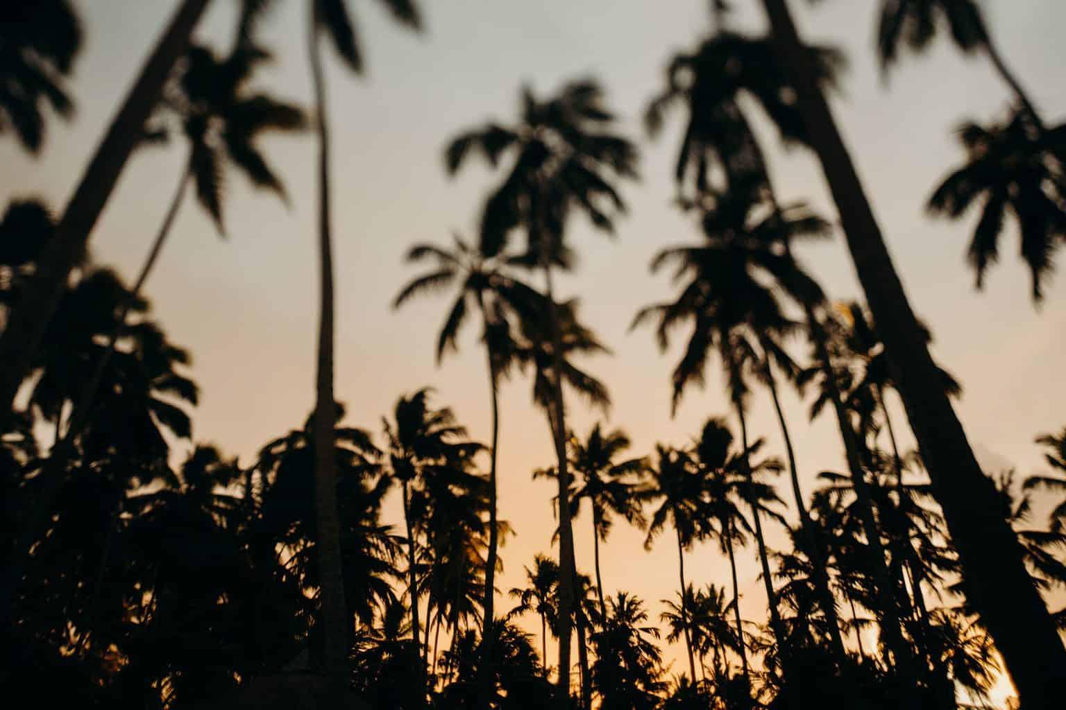 casamento-Danielle-e-Guilherme-aloha-fotografia-caseme-112