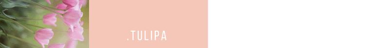 5_HEAD_Tulipa-2-750x100