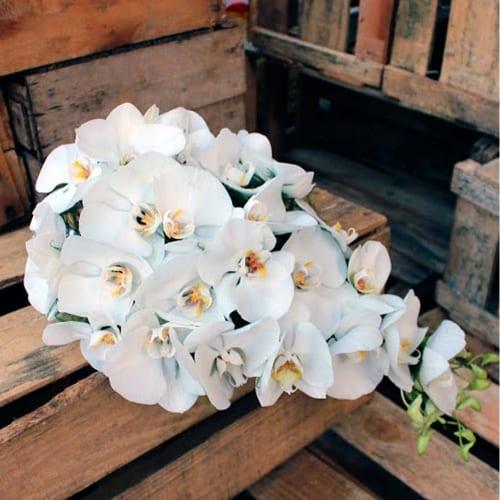 buque-cascata-Carla-Flores-buque-tradicional-com-orquídeas-brancas-buque-de-noiva-casamento