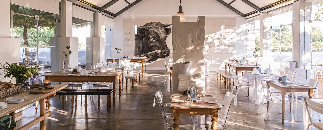Babel-Restaurant