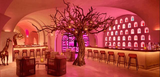 Restaurante-Arbol-Imagem-1