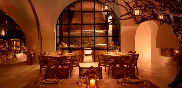 Restaurante-Arbol-Imagem-2