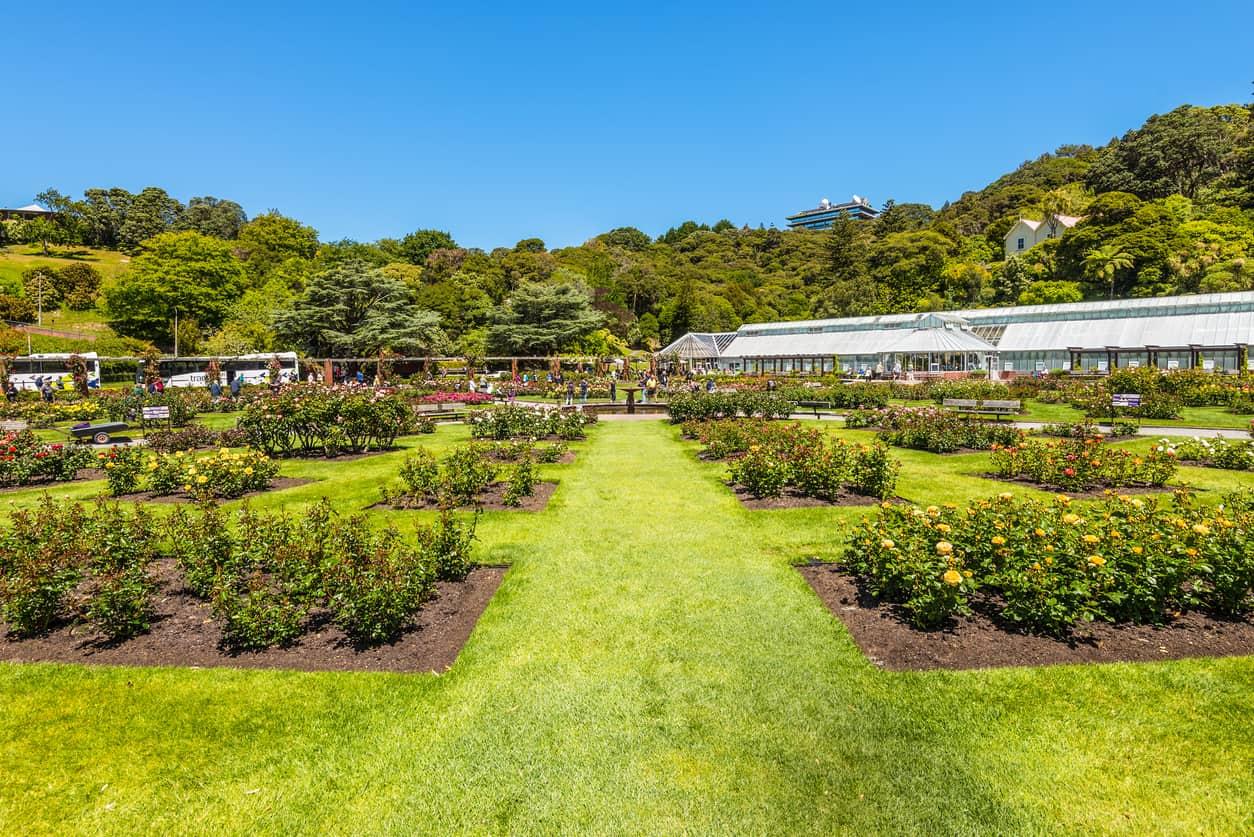 Jardim-Botânico-em-Wellington