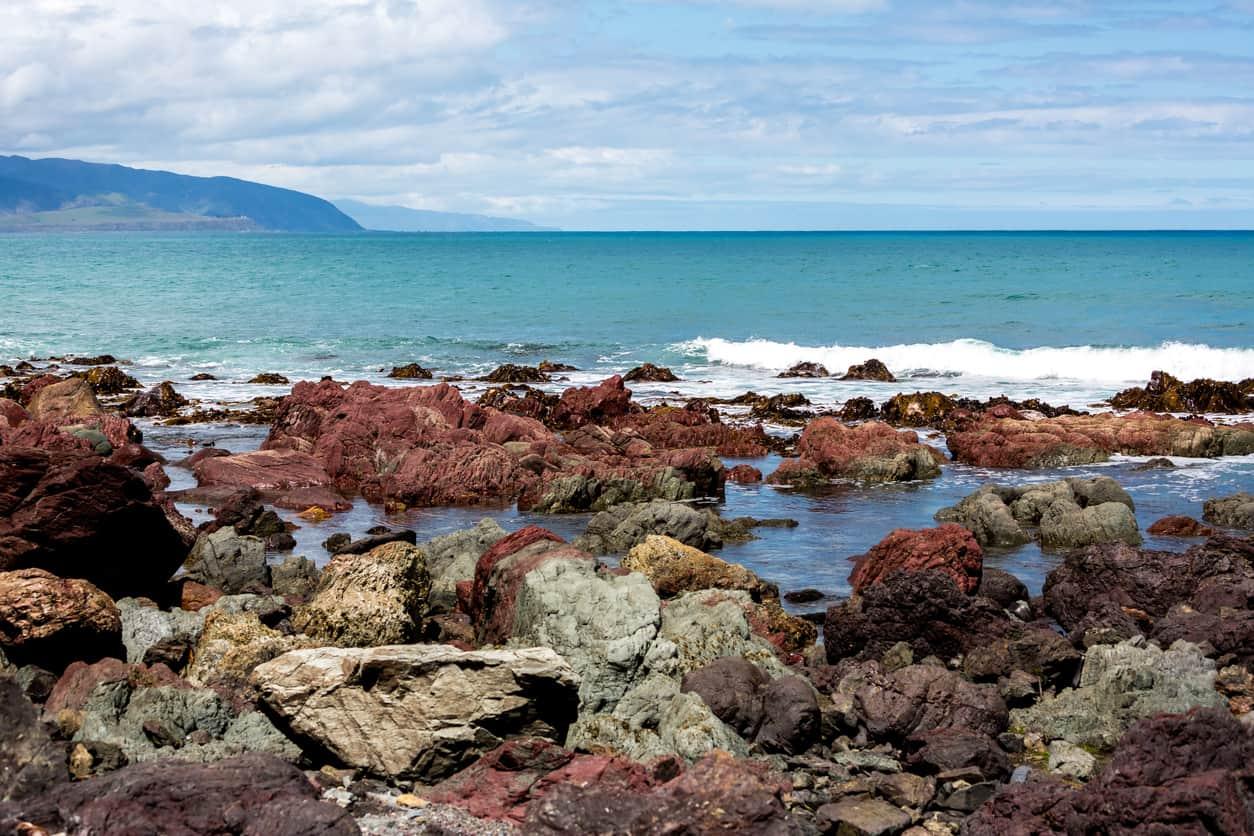 Red-Rocks-Reserve