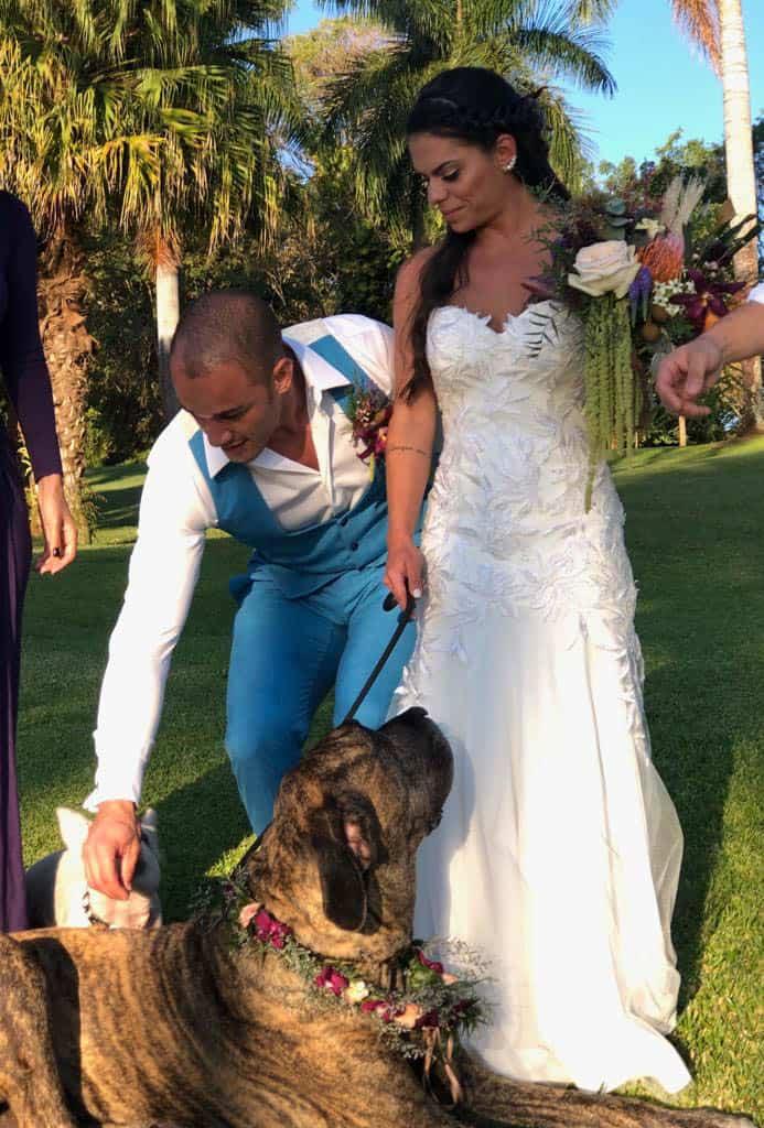 cachorro-casamento-bruna-e-frederic-cerimonia-ao-ar-livre-cerimonial-camila-luz-decor-renata-paraiso-decoracao-boho-pet-no-casamento14