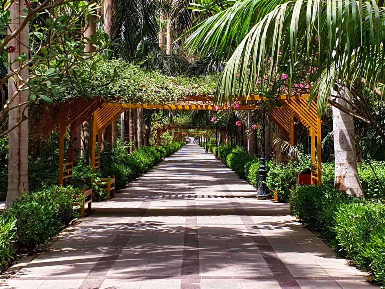 O-Jardim-Botânico-de-Aswan-é-uma-atração-ideal-para-os-casais-que-desejam-relaxar-em-uma-área-verde-tranquila.