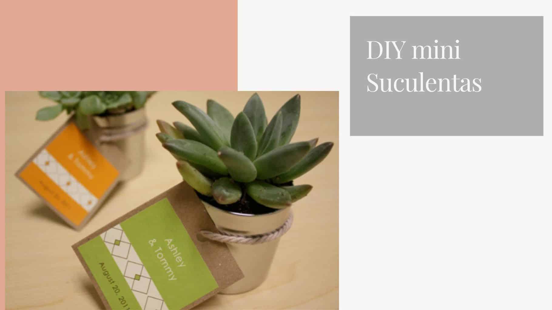 DIY-mini-suculentas-lembracinha-de-casamento-1