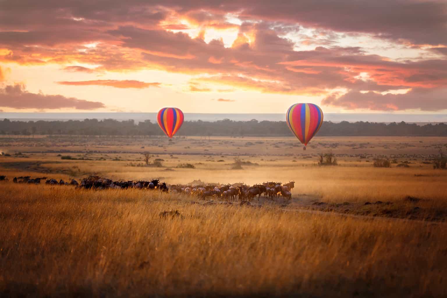 Para-uma-perspectiva-do-alto-um-safári-de-balão-permite-que-os-casais-apreciem-os-ângulos-mais-interessantes-da-reserva-Masai-Mara.