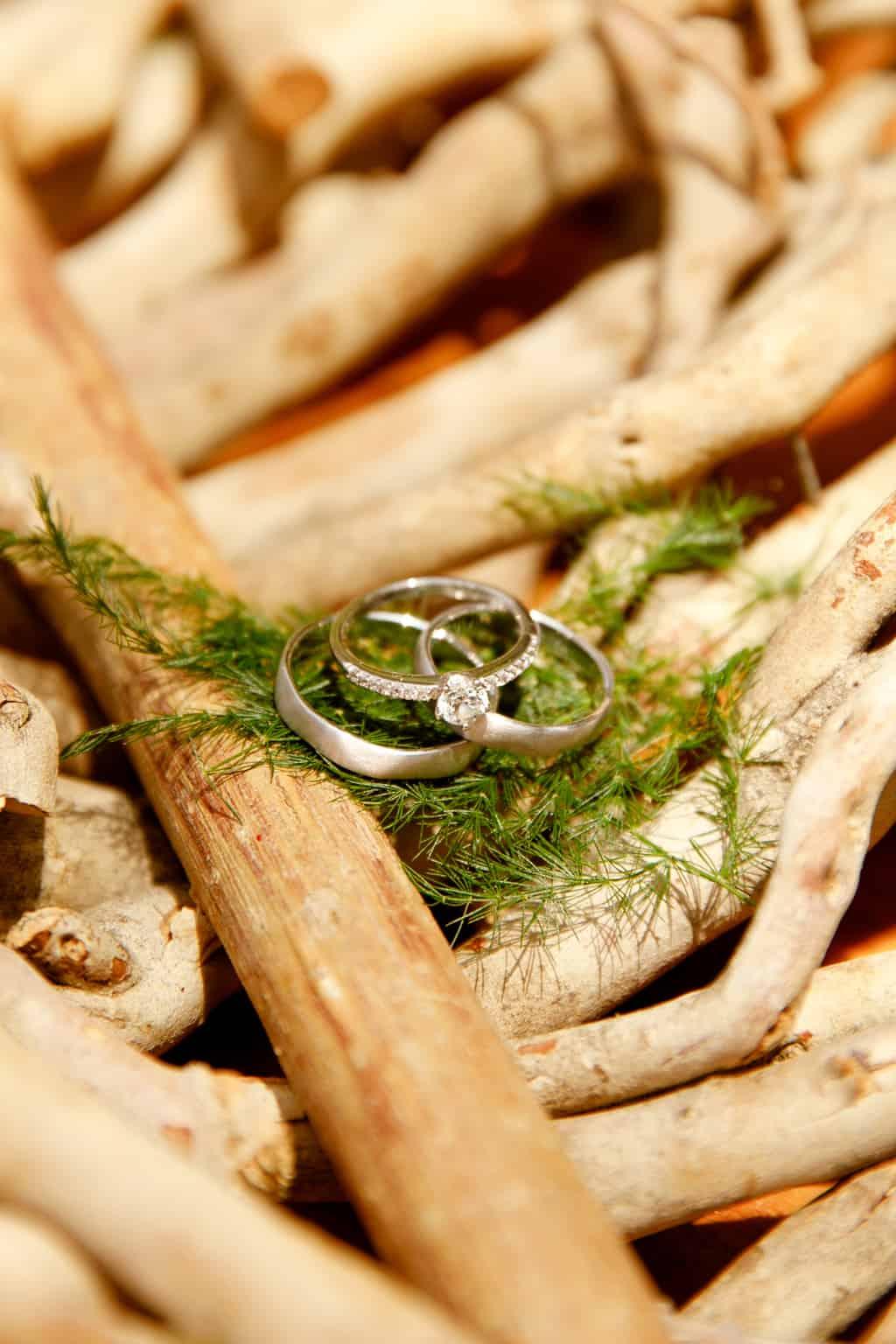 Casamento-Emanuelle-e-Alysson-Fotografia-Tadeu-Nanó-e-Luca-Antunes-244