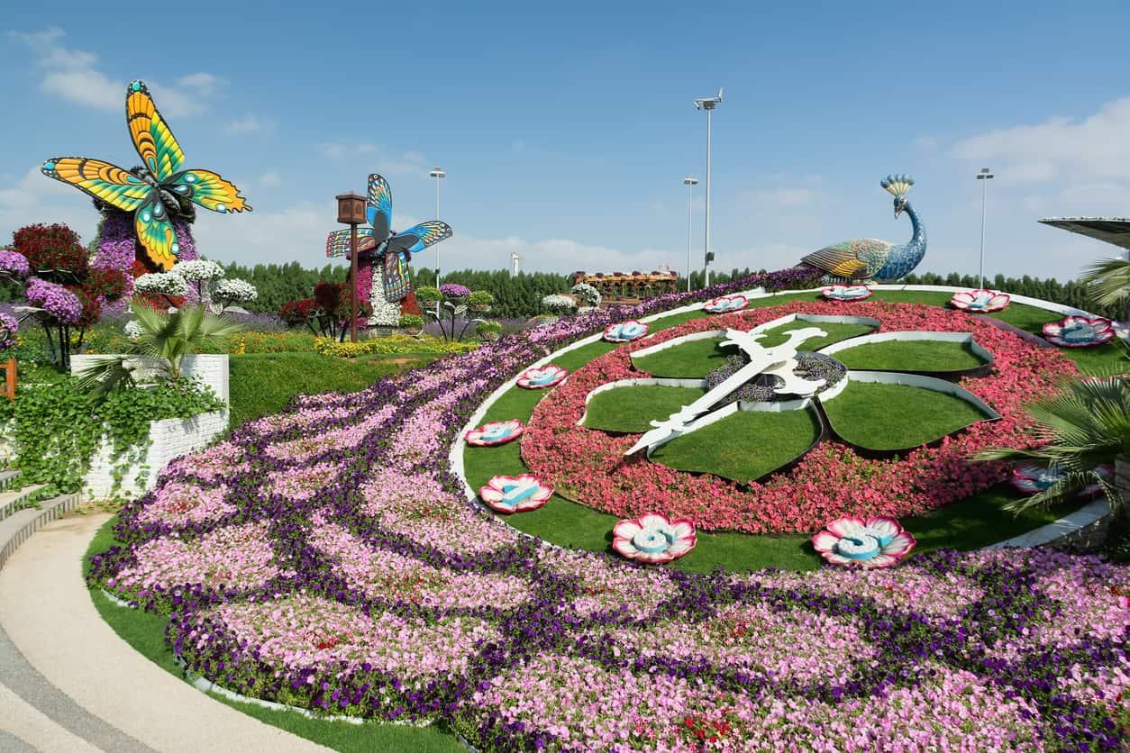 Lua-de-Mel-em-Dubai-Dubai-Miracle-Garden